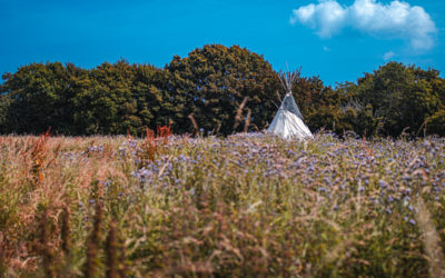Why Soul of Norfolk Tipi Lodge?